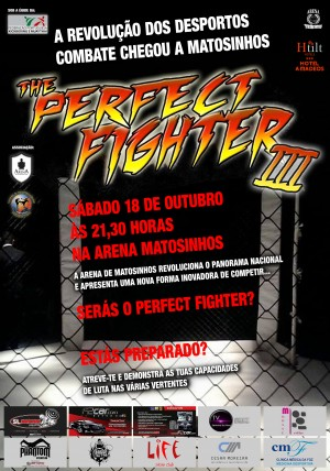 cartaz  perfect fighter